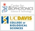 Center for Biophotonics